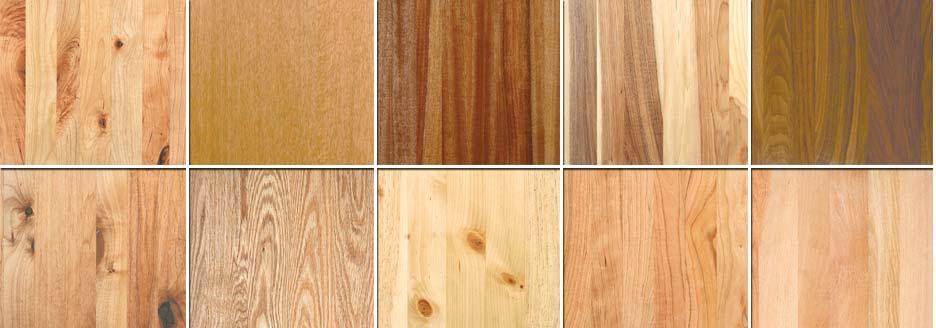 Types Of Wood Guide To Choose The Best Wood For Your Office Furniture Decorhubng